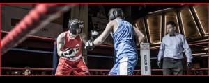 Ultimate White Collar Boxing vs Corporate Boxing